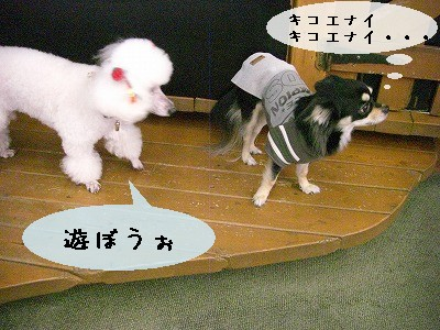 s-遊ぼう②