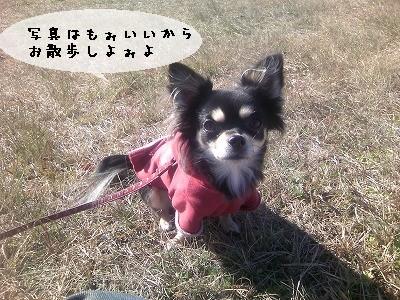 s-歩きましょ★