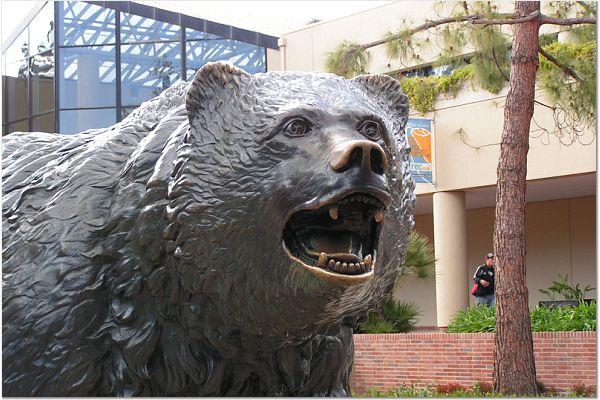 UCLA 0315 4