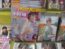 平野綾さんがヤングアニマル9号のグラビアを飾っていた(ゲーマーズなんば店)