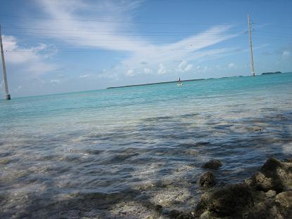 きれいな色の海!