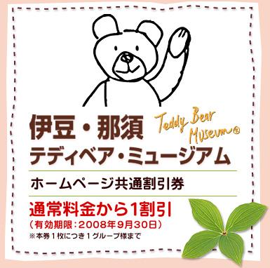 teddy bear bear coupon