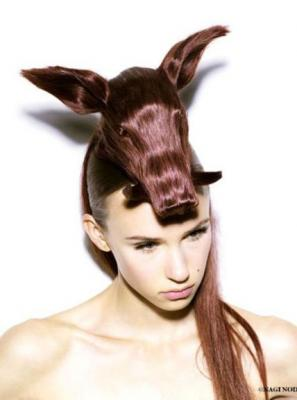 animal_hair11.jpg