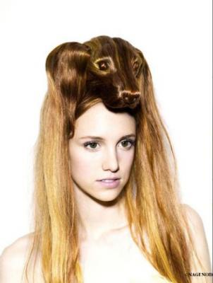 animal_hair4.jpg