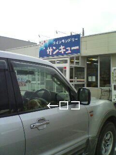 20081117131845