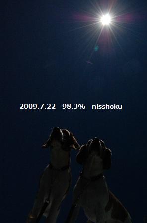 97n13.jpg