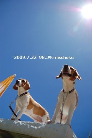97n14.jpg
