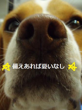 choki12.jpg