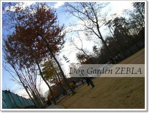 20081214_4.jpg