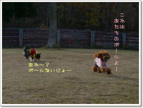 20081214_6.jpg