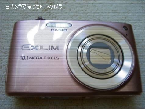 20081229_2.jpg