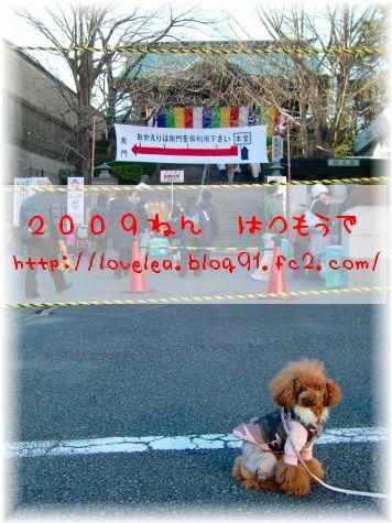 20090103_3.jpg