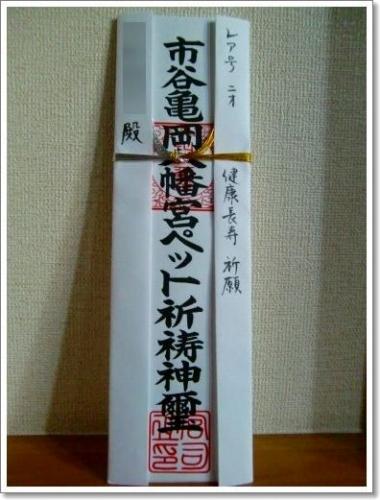 20090123_4.jpg