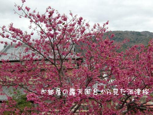 20090306_3.jpg
