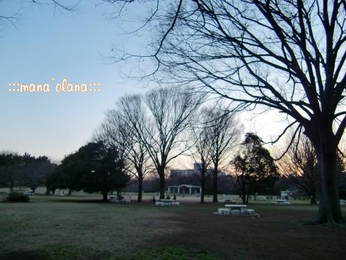 20090322_1.jpg