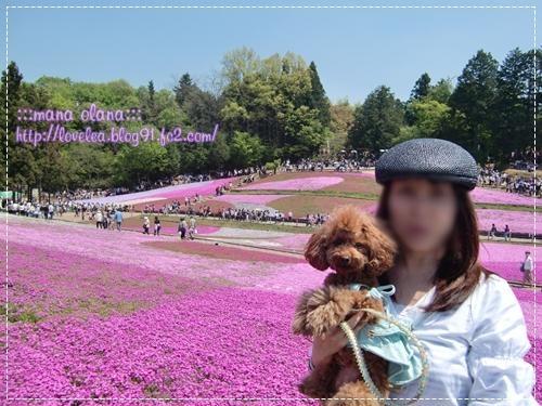 20090505_7.jpg