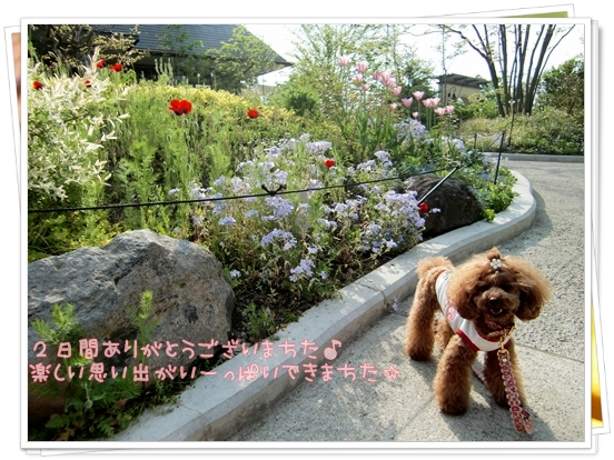 20090520_13.jpg