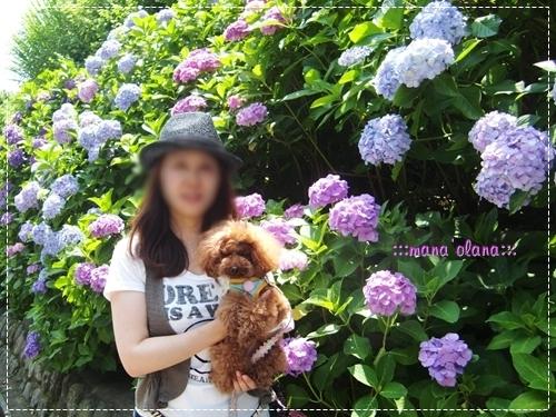 20090629_2.jpg
