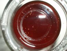 3日目 紅茶酵母#2