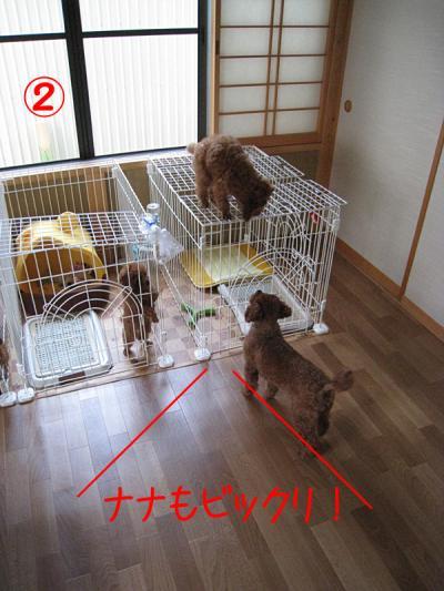 2008年9月3日潤・Q
