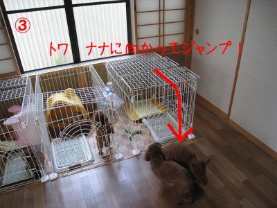 2008年9月3日潤・R
