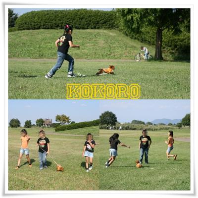 2008年10月13日№5
