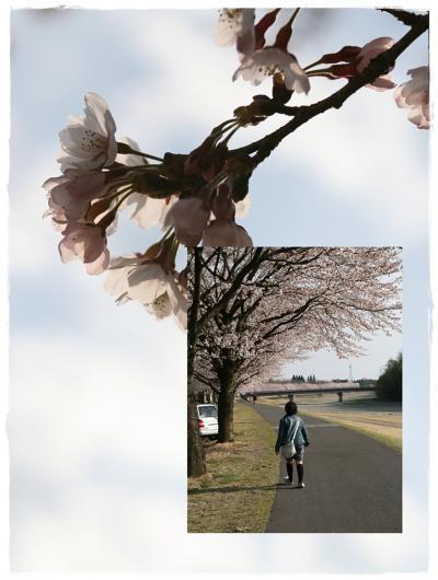 2009年4月5日№4
