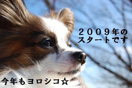 090101②