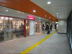 aoyama3.jpg