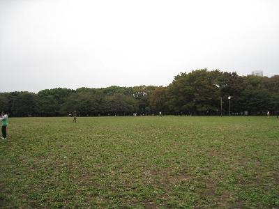 yoyogi13.jpg