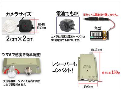 pin12_b2.jpg