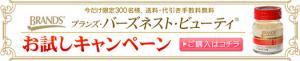 top_bana_02.jpg