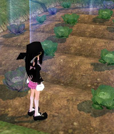 mabinogi_2009_03_01_002.jpg