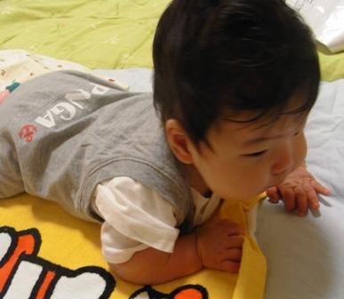 おくい染め2009-4-7