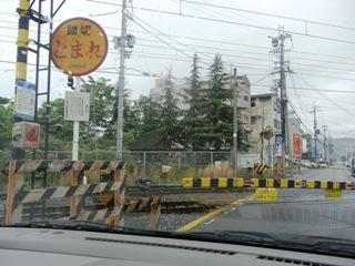 2009-5-16 くるみの木 001