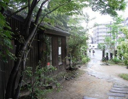 2009-5-16 くるみの木 003