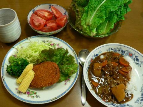 2009年6月2日夕食