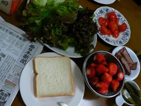 2009年1月18日昼食