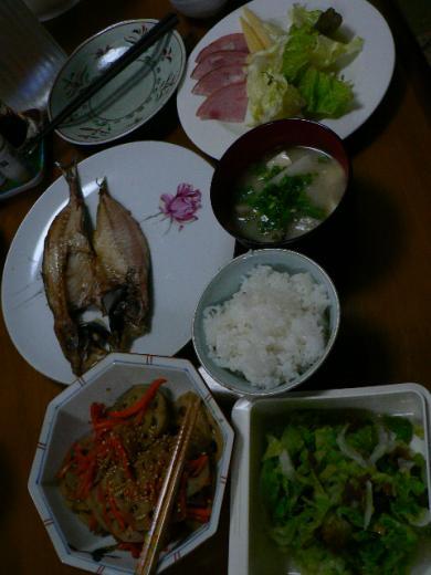 2009年3月24日夕食