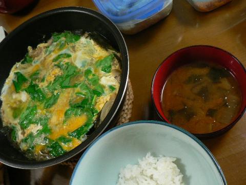 2009年4月27日夕食