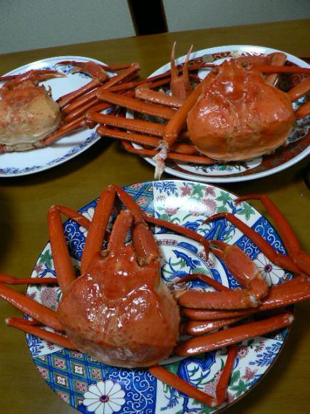 2008年11月28日能生(のう)産 紅ズワイガニで夕食