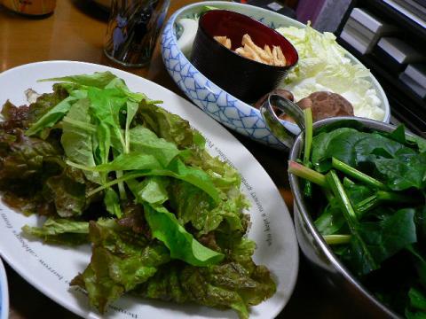 2008年12月31日夕食