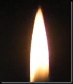 20090130082156