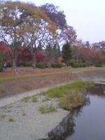 陸南公園2