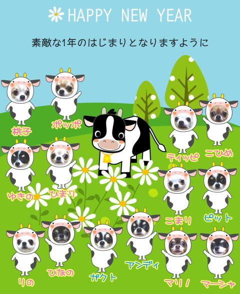 2009ushi1.jpg