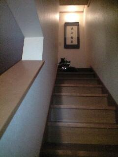 ビアンショコ階段8