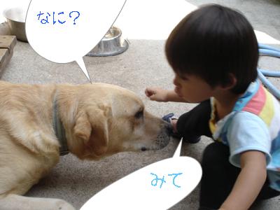 newphoto4.jpg