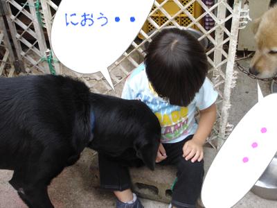 newphoto7.jpg