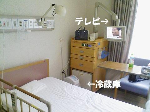 20090605-01.jpg