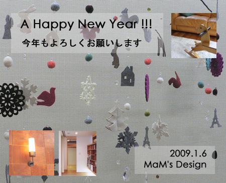 2009ny.jpg